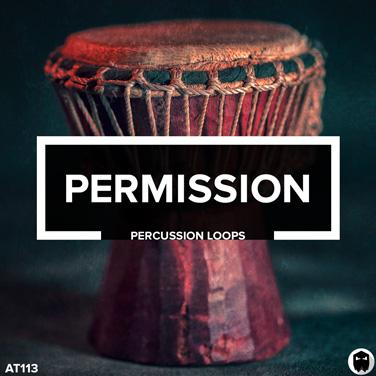 Audiotent Permission